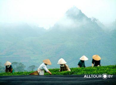 Вьетнам - экзотика по разумной цене