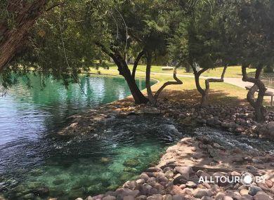 Тур по США с ALLTOUR. Ботанический сад, Аризона.