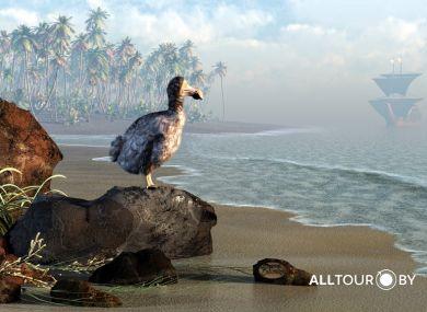 Символ Маврикия - вымершая птица Дронт