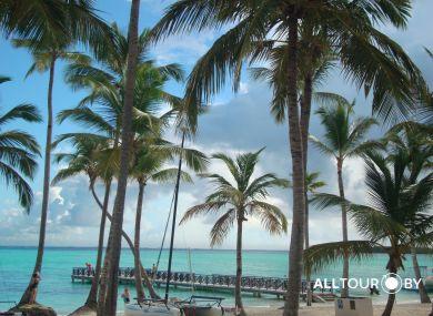Кокосовые пальмы и белоснежный песок - Доминикана