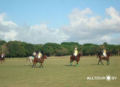 Одно из развлечений - конное поло в Доминикане