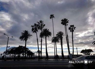 Тур в США с ALLTOUR. Пляж Венис , Лос Анджелес.