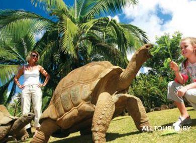 Уникальный Маврикий